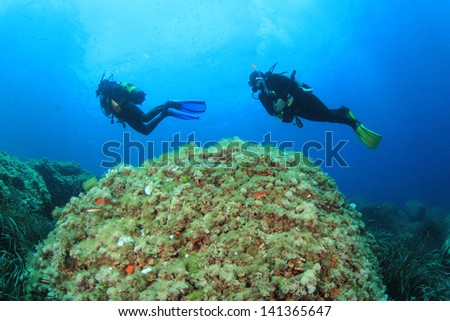 Two Scuba Divers swim over a reef in the Mediterranean Sea