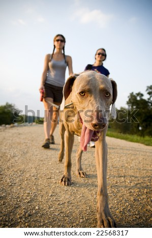 two women walking a dog