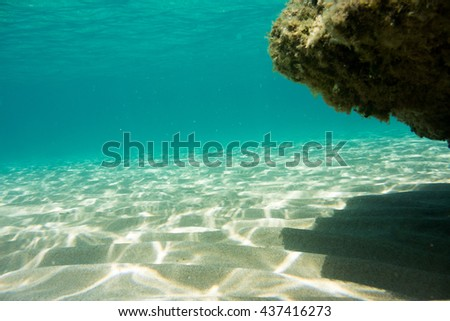 Underwater texture and fauna in Ionian sea, Zakynthos, Greece