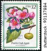 UNITED STATES - CIRCA 1998: stamp printed by United states, shows flower, Prairie Crab Apple, circa 1998 - stock photo