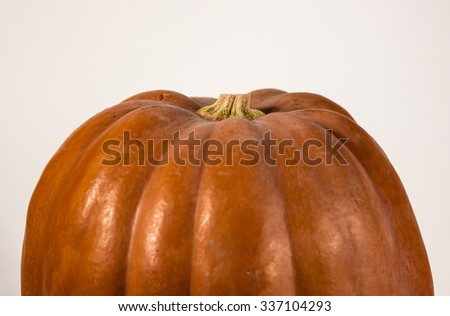 Upper part of the big ripe pumpkin