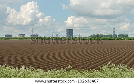 Urban view and agriculture in spring