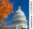 US Capitol Building in Autumn - Washington DC United States - stock photo