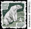 "USSR - CIRCA 1964: A Stamp printed in USSR shows image of a Polar Bear from the series ""100th anniv. of the Moscow zoo"", circa 1964 - stock photo"
