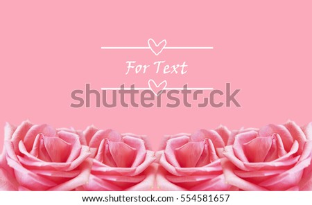 Valentine's day background with pink Rose -   romantic background with example text  (soft Focus).