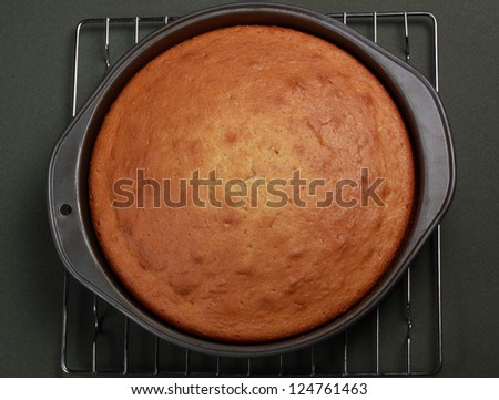 vanilla cooked cake in baking pan