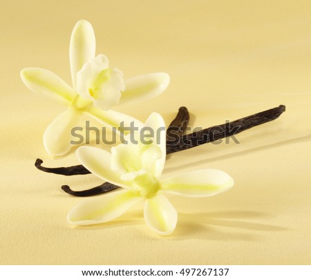 VANILLA POD AND FLOWERS