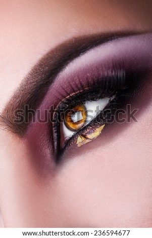 Vertical photo of woman brown eye looking away in studio.macro photo