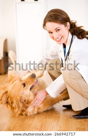 Veterinarian: Tickling a Dog