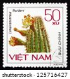 VIETNAM - CIRCA 1985: a stamp printed in Vietnam shows Arizona Organ Pipe, Lemaireocereus Thurberi, Cactus, circa 1985 - stock photo