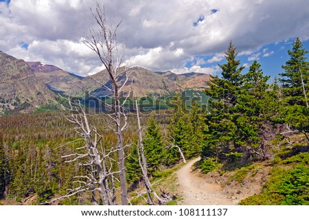 View along the scenic point trail in Glacier National Park