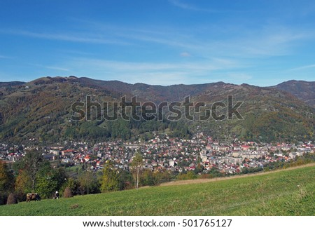 View from a mountain pasture on the valley of the river Tisa and the town Rakhiv