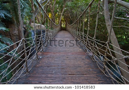 View from a wooden rope bridge suspended over a stream in a rainforest in Africa