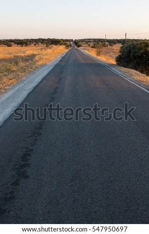 View of a long countryside road in Alentejo, Portugal.