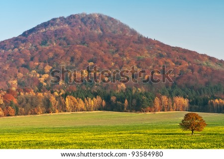 View of an autumn European countryside during the sunny day.