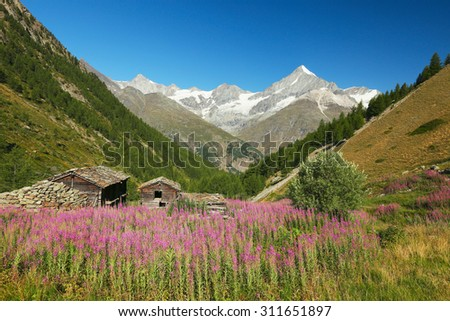 View of the alpine farm and Weisshorn, Switzerland