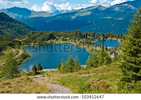 view of the lake Colbricon near the Rolle pass, Dolomites - Italy