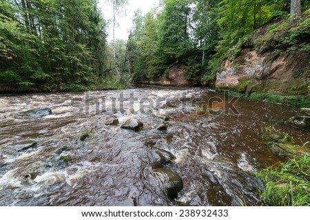 view to the mountain river in summer surrounded by forest and sandstone cliffs
