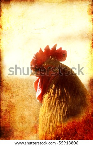 Vintage looking picture of Rooster with textured background