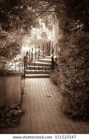 Vintage toned garden path and steps surrounded by trees.