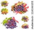 Virginia creeper or five-leaved ivy (Parthenocissus quinquefolia) in autumn colors. - stock photo