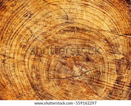 Warm brown and orange wood texture with wavy pattern and cut lines