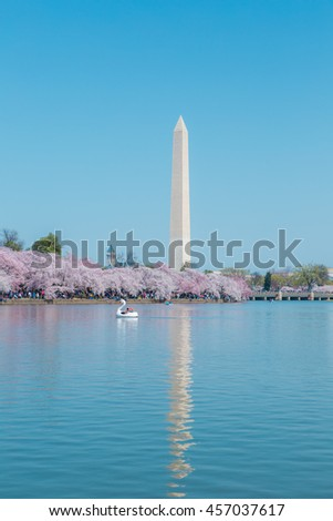 Washington Monument in spring, Cherry Blossom Festival - Washington DC,USA