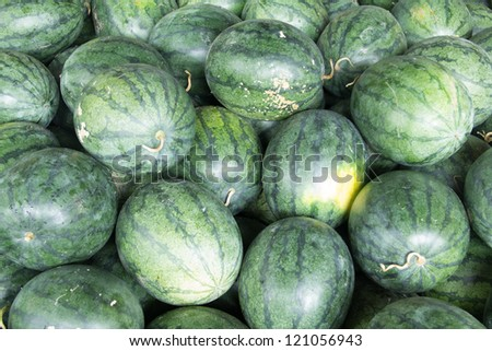 water melons in the market