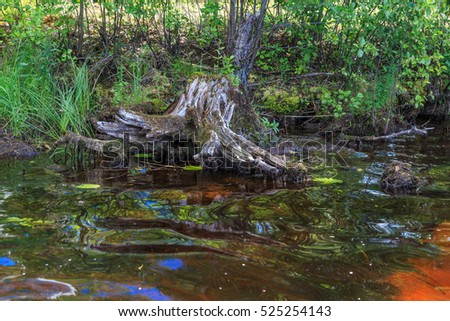 Water red shade in the lake, peat bogs stained water in beautiful colors, horizontal frame