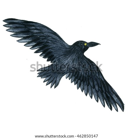 watercolor black flying raven, drawing bird, hand drawn illustration