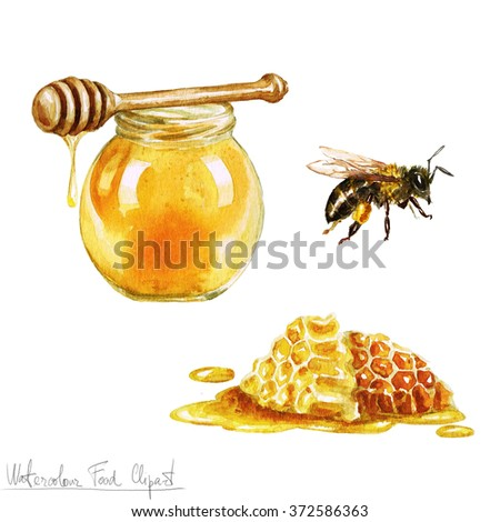 Watercolor Cooking Clipart - Honey