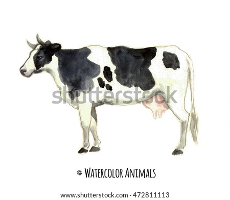 Watercolor cow. Farm animals.Tee shirt graphic. Animal silhouette watercolor sketch. Wildlife art illustration.Vintage graphic for fabric,postcard,greeting card,book
