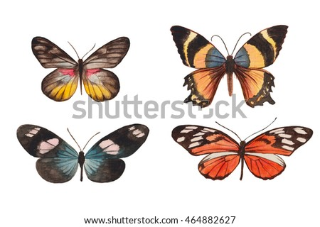 Watercolor illustration with butterflies, isolated on a white background.