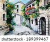 watercolor painting - flowers along the street - stock photo