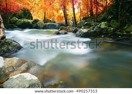Waterfall in autumn forest at Pattalung Southern Thailand,select focus with shallow depth of field:ideal use for background.