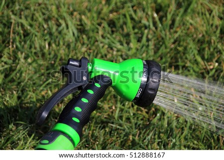 Watering lawn grass with an adjustable shower (spray) in the summer garden