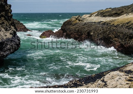 Waves hitting a rocky shore of the Pacific ocean