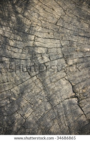 weathered cracked wooden surface / abstract grungy background