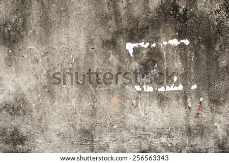 Weathered old stucco wall, highly detailed textured background