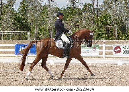 West Palm Beach Wellington Horse Show