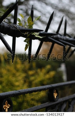 wet black metal barbed wire with a drop of water on a fence close up selective focus blurred background