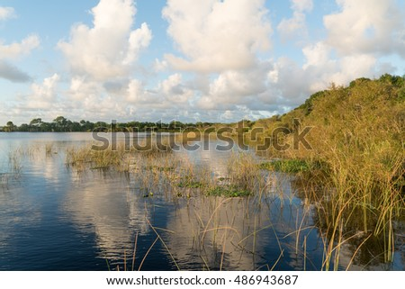 Wetlands in Central Florida
