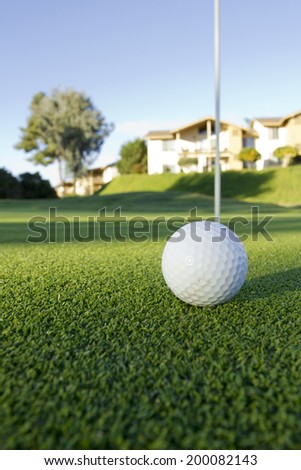 White ball for golf on grass lawn.