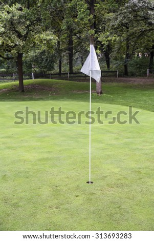 White golf flag on a field. Golf course with white pennant. White flag marking the hole. Made with shallow depth of field.