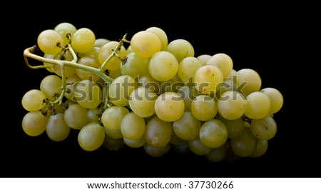 white grape cluster isolated on black background