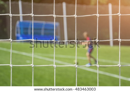 White mesh on the football pitch against the green lawn and a football player with the ball