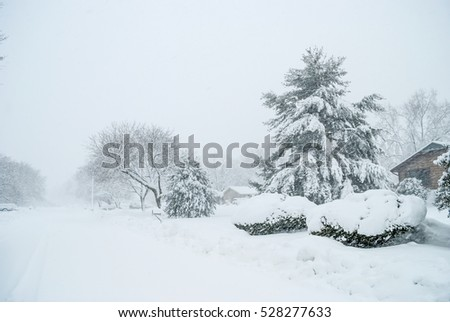 White-out conditions during this 2010 blizzard in Central New Jersey.