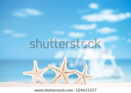 white starfish with ocean, boat, white sand beach, sky and seascape, shallow dof