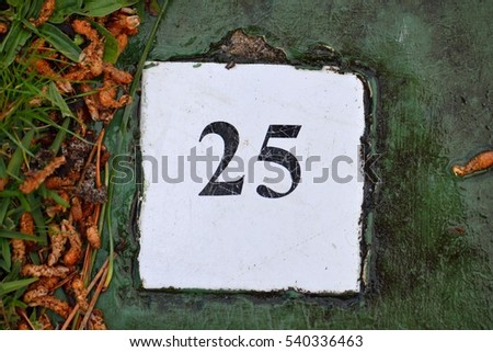 White tile with the number twenty five on a green background painted cement with leaves