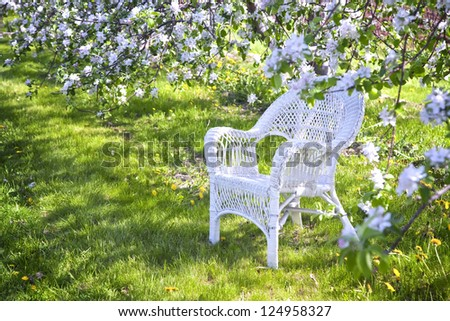 White wicker chair under the shade of apple trees.